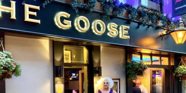 the goose gay bar gaymapper
